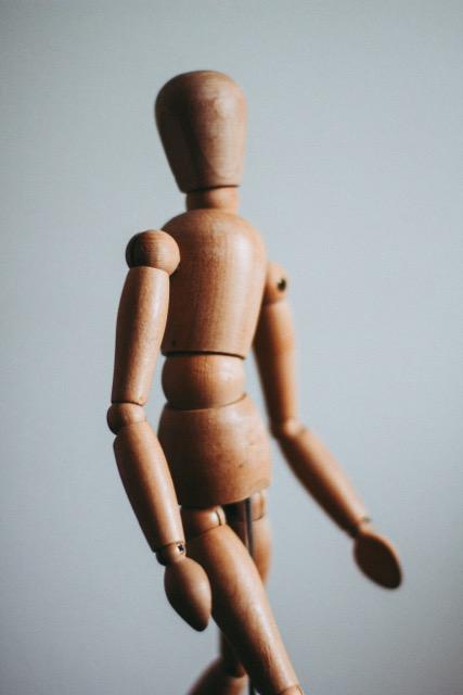 regeneration, How can we help our bodies regenerate?, Peak Chiropractic