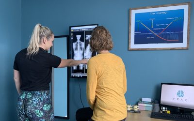 chiropractic published articles, Articles, Peak Chiropractic