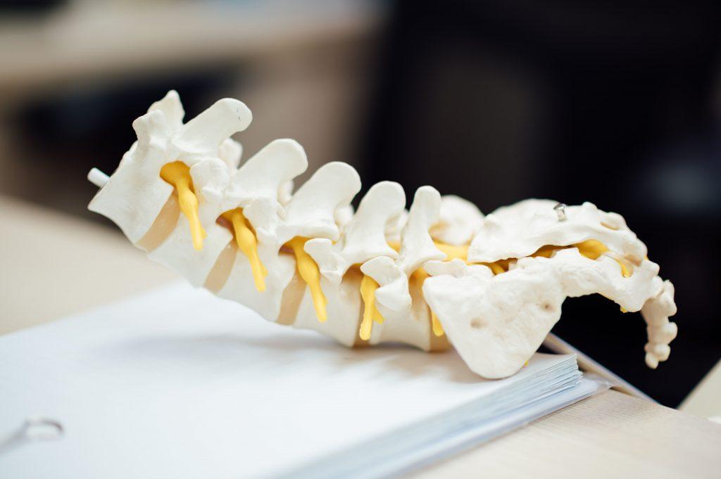 Chiropractic, A-Z of Chiropractic, Peak Chiropractic